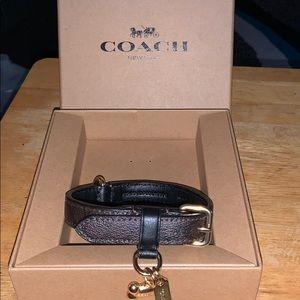 Coach pet collar.